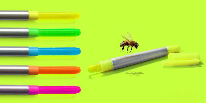 bee-pen
